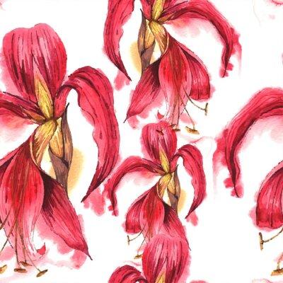 Fototapeta Jednolite Akwarela egzotycznych kwiatów tropikalnych w tle