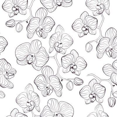 Fototapeta Jednolite kwiatowy wzór z orchidei Phalaenopsis tle