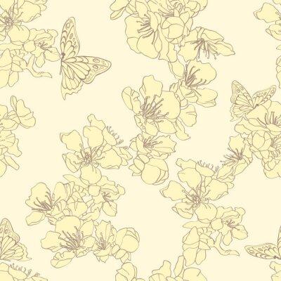 Fototapeta Jednolite tło z motyli i kwiat moreli