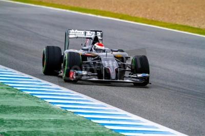 Fototapeta Jerez de la Frontera, Hiszpania - 31 stycznia: Adrian Sutil z Sauber F1 wyścigi na sesji szkoleniowej w dniu 31 stycznia 2014 w Jerez de la Frontera, Hiszpania