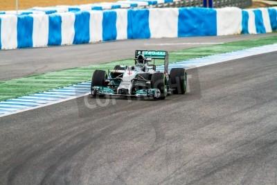Fototapeta Jerez de la Frontera, Hiszpania - 31 stycznia: Nico Rosberg z Mercedes wyścigach F1 na treningu 31 stycznia 2014 w Jerez de la Frontera, Hiszpania