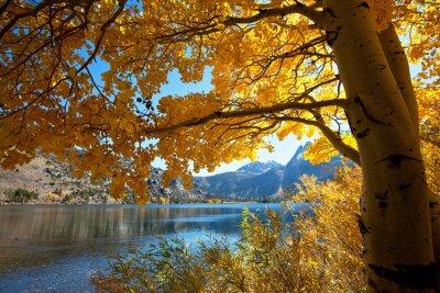 Fototapeta jesień jezioro