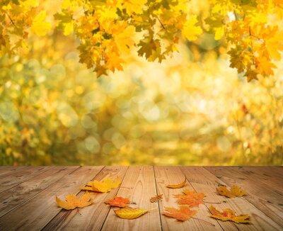 Fototapeta jesień tło