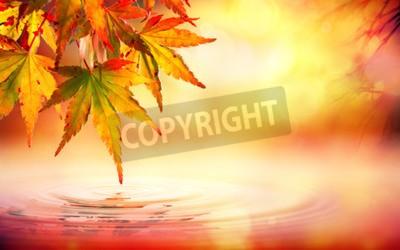 Fototapeta Jesień tło spa z czerwonymi liśćmi na wodzie