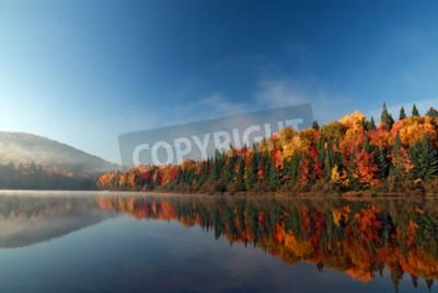 Fototapeta Jesień w Kanadzie. Jesienią lasu odzwierciedlone w wodzie.