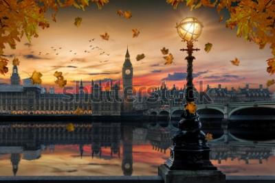 Fototapeta Jesień w Londynie: złoty zachód słońca za Pałacem Westminster nad Tamizą ze spadającymi jesiennymi liśćmi z drzew z przodu, Wielka Brytania