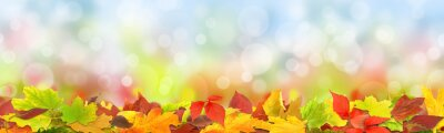 Fototapeta Jesienią 125