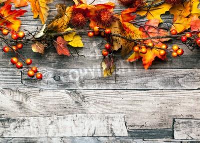 Fototapeta Jesienią tła