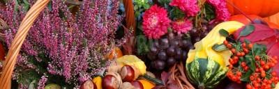 Fototapeta Jesienne kwiaty, warzywa i owoce w koszu