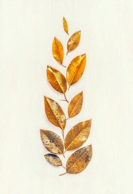 Fototapeta Jesienne liście złota składają się, płaskie, kształt uszu, widok z góry