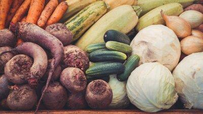 Jesienne zbiory warzyw. Retro stonowanych.