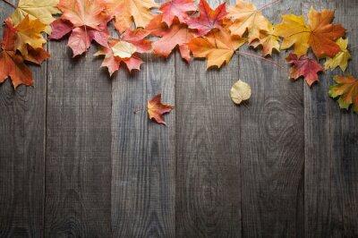 Fototapeta jesienny liść rama słów i napisów, copyspace