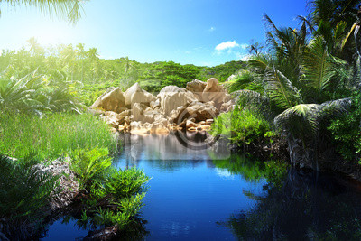 Jezioro w dżungli Seszele, La Digue