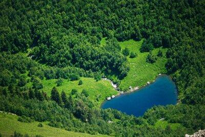 Fototapeta Jezioro w lesie
