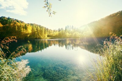 Fototapeta jezioro w lesie, Chorwacja, Plitwickie