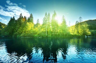 jezioro w lesie, Chorwacja, Plitwickie