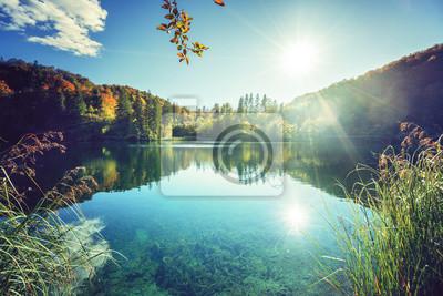 jezioro w lesie w Chorwacji