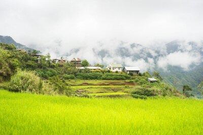Fototapeta Kalinga wieś