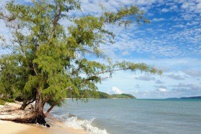 Fototapeta Kambodża. Piękne wybrzeże Botum Sakor National Park w pobliżu Sihanoukville Aby dostać się do lasów namorzynowych i niemal pustych plaż