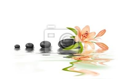 Kamień i Zen