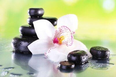 Fototapeta Kamienie spa i biały storczyk na stole na tle naturalnych