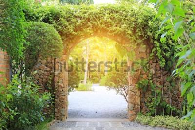 Fototapeta Kamienna brama wjazdowa pokryta bluszczem. Brama do parku ze światłem słonecznym.