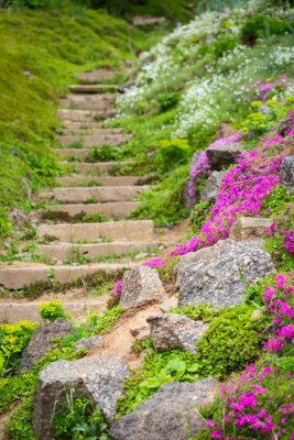 Fototapeta Kamienne schody w ogrodzie