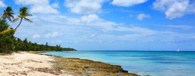 Fototapeta Karaiby morze i palmy.