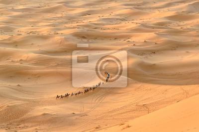 Karawan Wielbłądów w Erg Chebbi Wydmy piaszczyste w Merzouga, Maroko