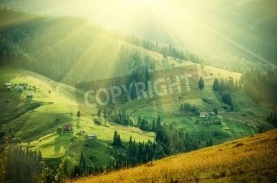 Fototapeta Karpacki górskie słoneczny krajobraz