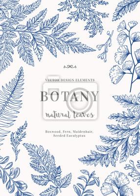 Karta Botaniczny za liśćmi.