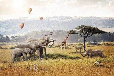 Fototapeta Kenya Safari Dream Trip Scene