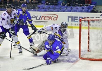 Fototapeta KIJÓW, Ukraina - 09 lutego 2012: Denys Zabludovskiy Ukrainy (w kolorze niebieskim, nr 10) walczy o krążek z rumuńskich graczy podczas ich na Euro Hockey Challenge gry w dniu 9 lutego 2012 w Kijowie, U