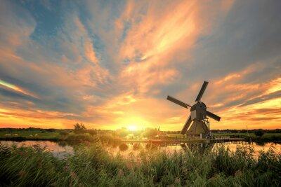Fototapeta Kinderdijk Wiatrak słońca