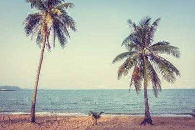 Fototapeta Kokosowe drzewo na plaży