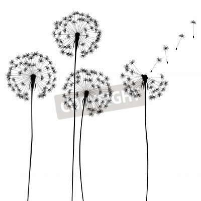 Fototapeta Kolekcja, dla projektantów wektor roślin,