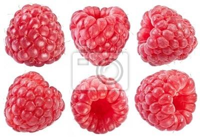 Fototapeta Kolekcja dojrzałych czerwonych malin