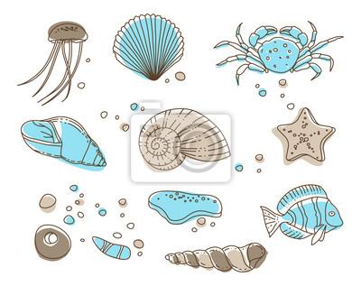 Kolekcja morze