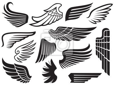 Fototapeta Kolekcja skrzydeł (komplet skrzydeł)