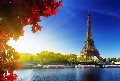 Fototapeta kolor jesienią w Paryżu
