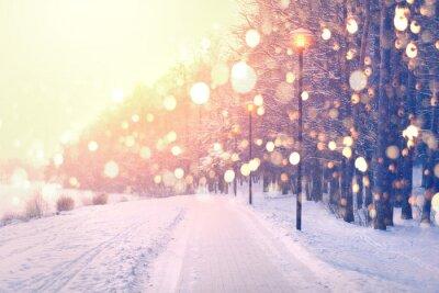 Fototapeta Kolor płatki śniegu na tle zimowego parku. Opad śniegu w parku.