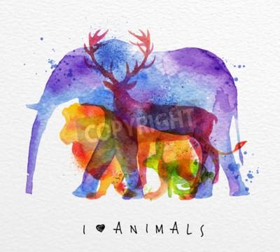 Fototapeta Kolor zwierząt, słoń, jelenie, Lew, królik, rysunek nadruk na papier akwarelowy tle napisem Kocham zwierzęta
