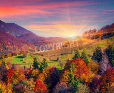 Fototapeta Kolorowa jesień rano w górskiej
