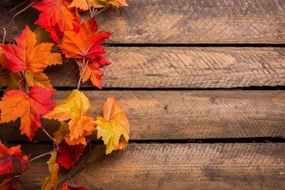 Fototapeta Kolorowe jesienne liście