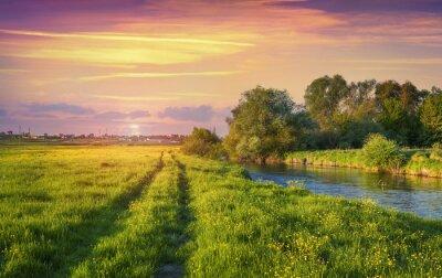 Fototapeta Kolorowe wiosny słońca na rzece.
