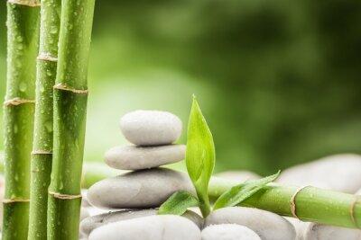 Koncepcja Spa z kamieni zen bazaltowe i bambus