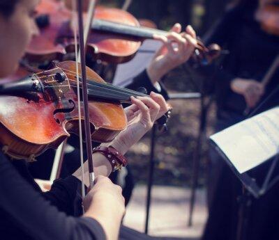 Fototapeta Koncert muzyki klasycznej na zewnątrz.