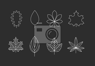 Kontury liści ikony