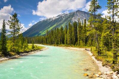 Fototapeta Kootenay Vermilion rzeka w parku narodowym w Kanadzie