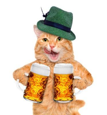 Fototapeta Kot z kufel piwa